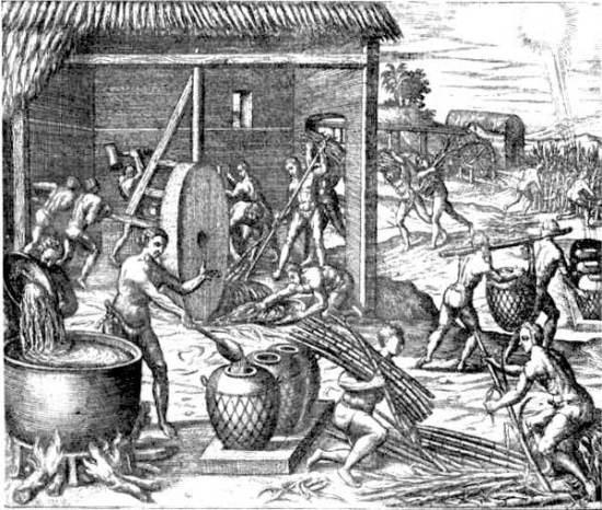 Slavesproducingsugar
